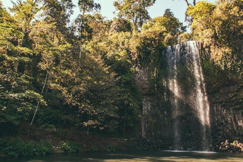 millaa millaa falls atherton tablelands