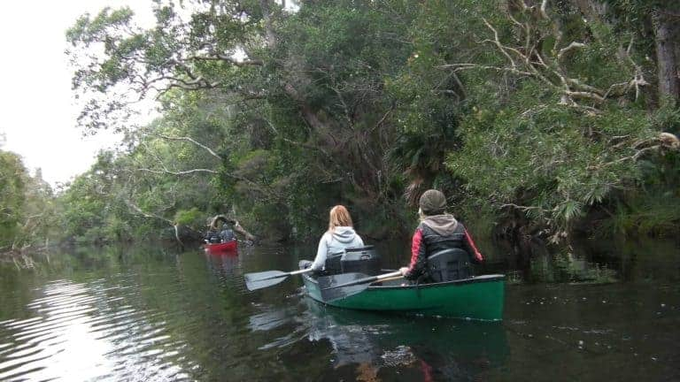 noosa everglades discovery group