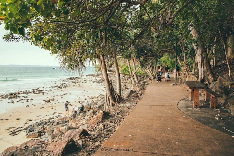 noosa heads coastal walk