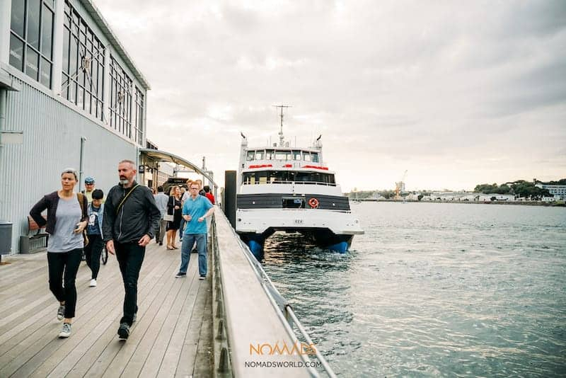 what to do in auckland