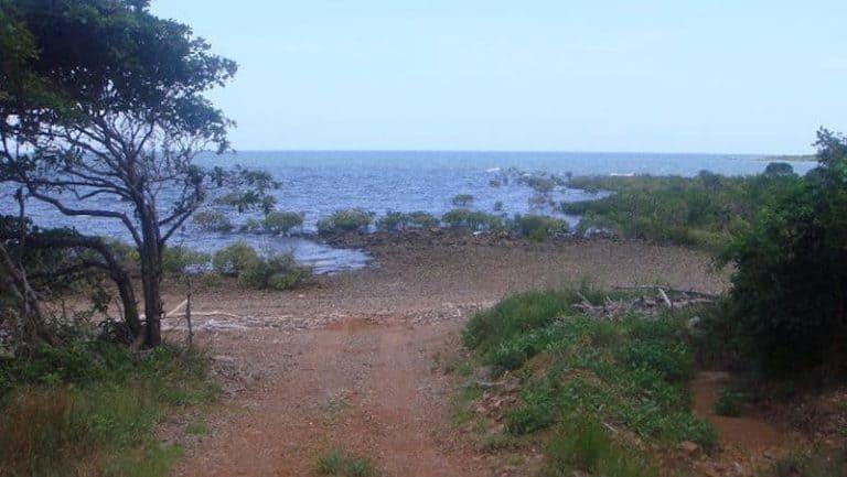 midge point airlie beach