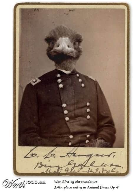 the great emu war commander