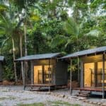 jungle huts - cape tribulation backpackers accommodation