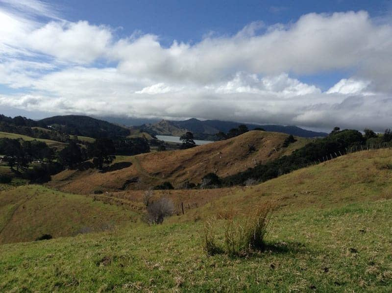 recharge your batteries in the coromandel