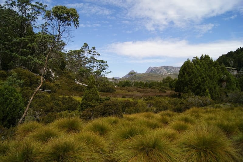 hiking tracks in tasmania - cradle mountain