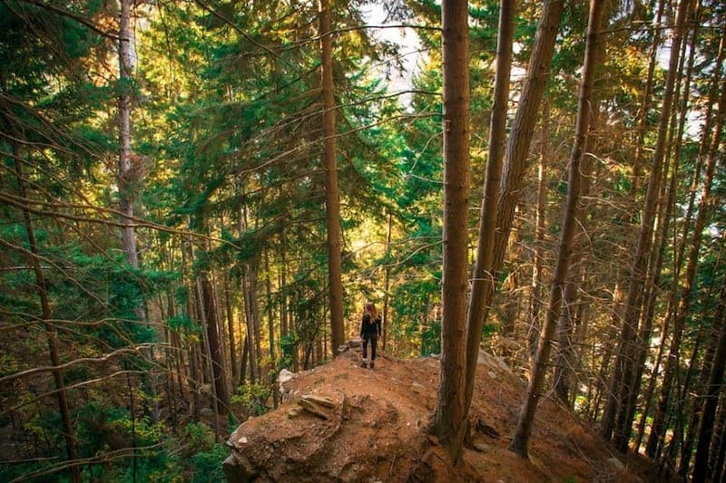 the tiki trail - hiking in queenstown
