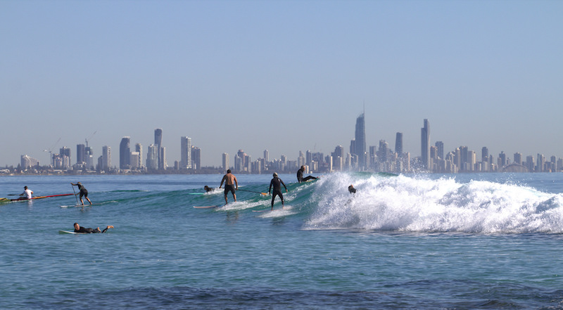 surfing in surfers paradise.